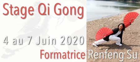 STAGE QI GONG - Niveau 1